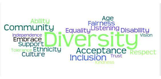 Diversity Slider